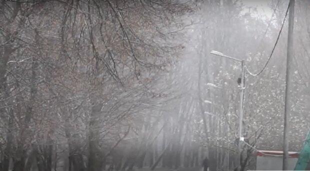 Погода в Україні, фото: кадр з відео