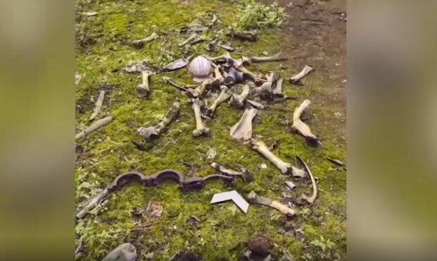 Блогер виявив у Чорнобилі купу кісток