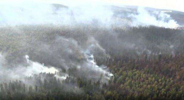 пожежі в Сибіру, Росія