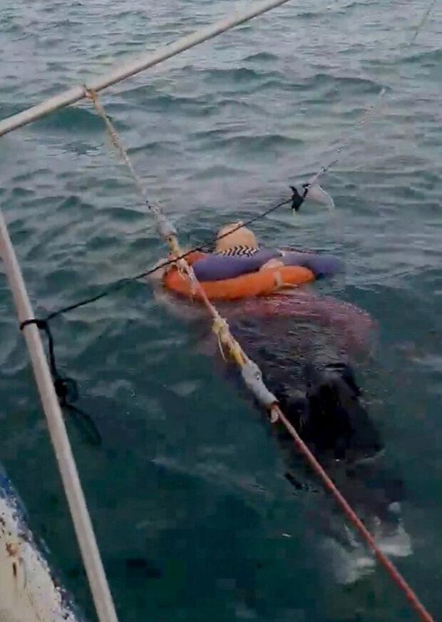 Зниклу два роки тому жінку знайшли дрейфуючою серед моря