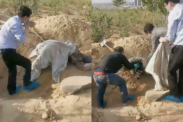 Паралізовану стареньку поховали живцем