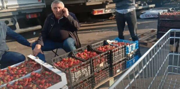 полуниця, ринок, базар