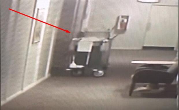 Камери спостереження у готелі зняли, як з ліфта вібигає примарна фігура