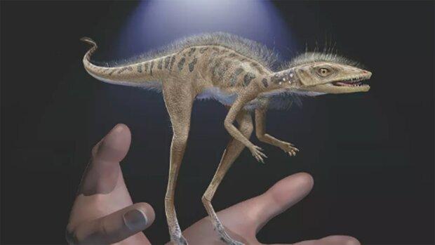 Вчені знайшли крихітного родича динозаврів